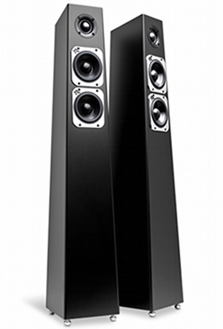 Enceinte TOTEM ACOUSTIC TRIBE TOWER